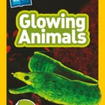 Nat Geo Readers: Glowing Animals (Level 1 Co-Reader)